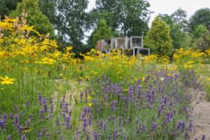 Toepassing vaste planten op begraafplaatsen